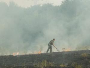 A tűz már az erdőt veszélyezteti_DSCN1559_Esztó Kinga